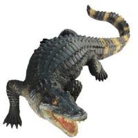 D 646 Крокодил (1)