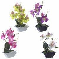 265684 Цветочная композиция Орхидея 11*6*22,5 см 4