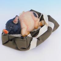 SM-34010 Свинья в сумке, 19*19*8см, полистоун