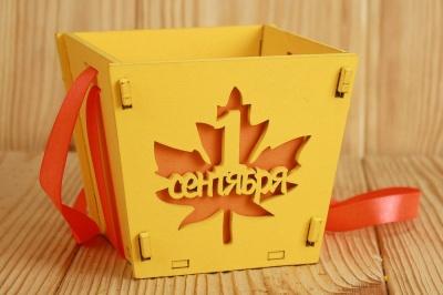 ПУ533-02-1616 Подарочная упаковка